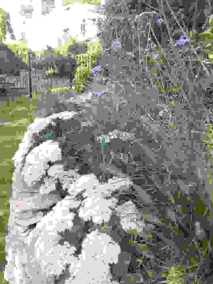 Verbenas and sedums. by Westacott Gardens