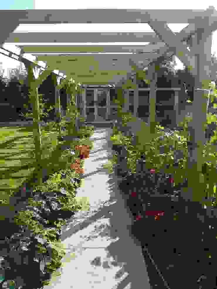 Softwood pergola. by Westacott Gardens