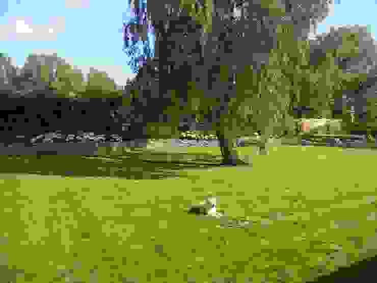 New lawn. by Westacott Gardens