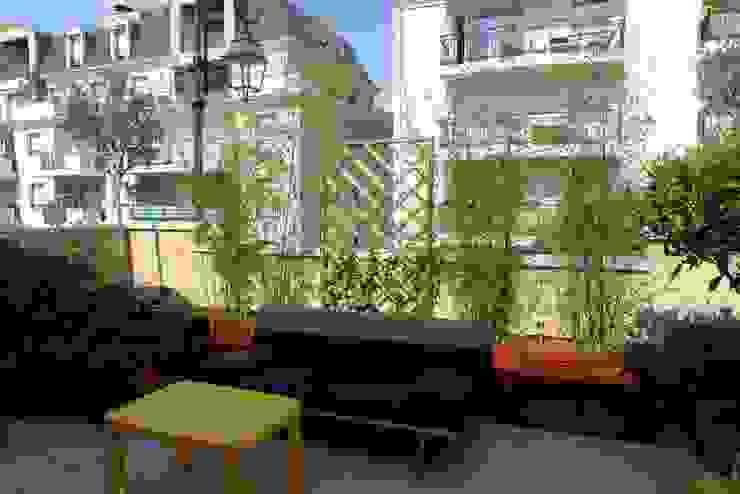 Asian style balcony, veranda & terrace by Benji Paysage Asian