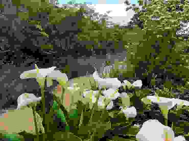 Walled Garden, Bradford Upon Avon Nowoczesny ogród od Katherine Roper Landscape & Garden Design Nowoczesny