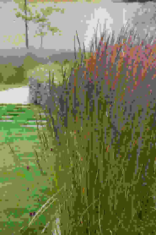 Walled Garden, Bradford Upon Avon Modern garden by Katherine Roper Landscape & Garden Design Modern