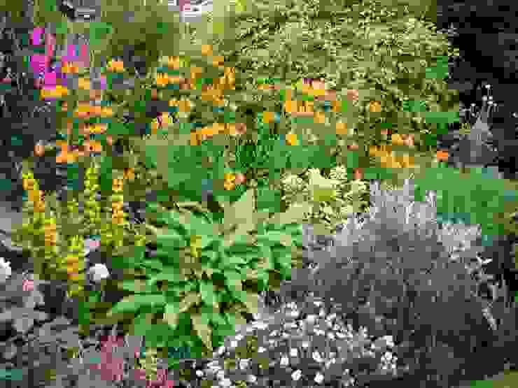 Planting Rustic style garden by Anne Macfie Garden Design Rustic