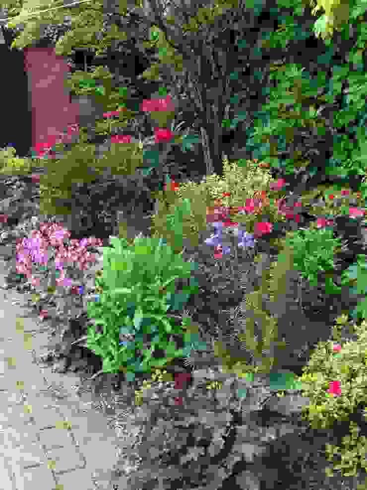A shady border Rustikaler Garten von Anne Macfie Garden Design Rustikal