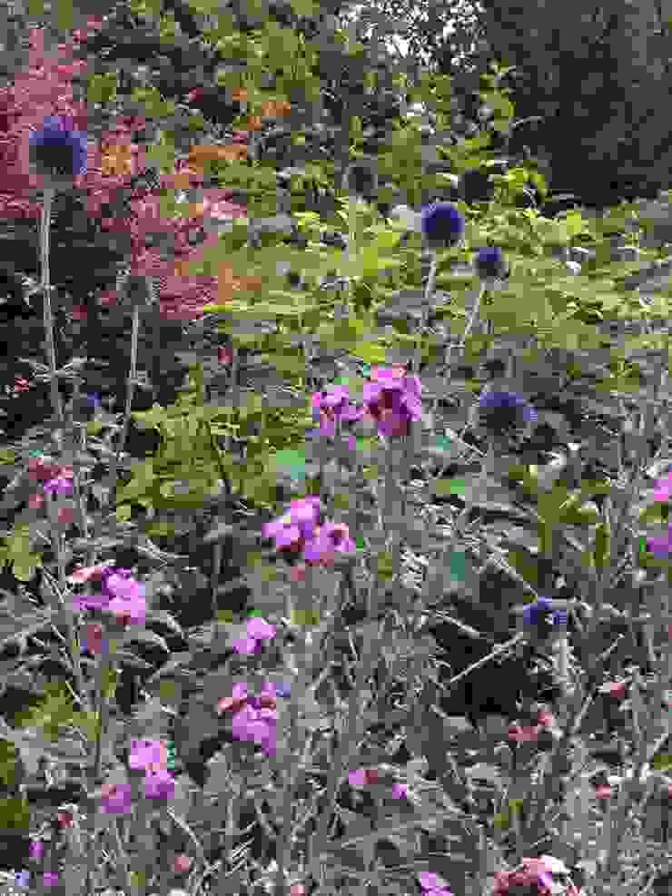 Lovely tones Rustikaler Garten von Anne Macfie Garden Design Rustikal