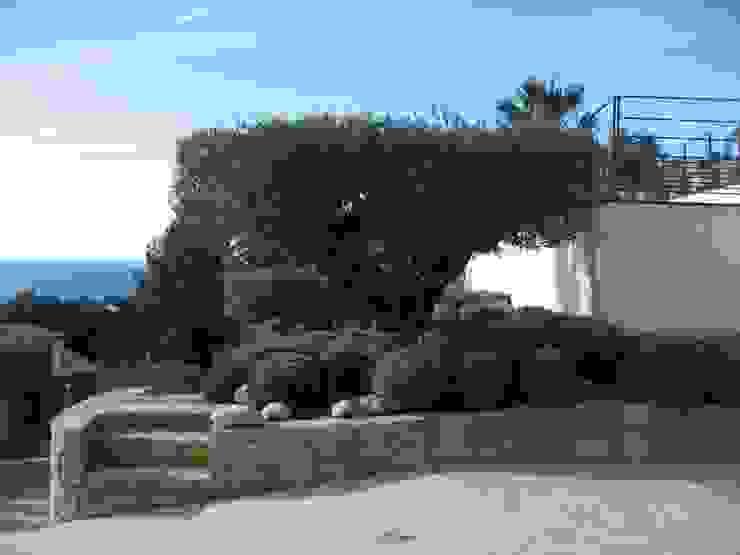 Mediterranean style garden by Vanessa Cottin Mediterranean