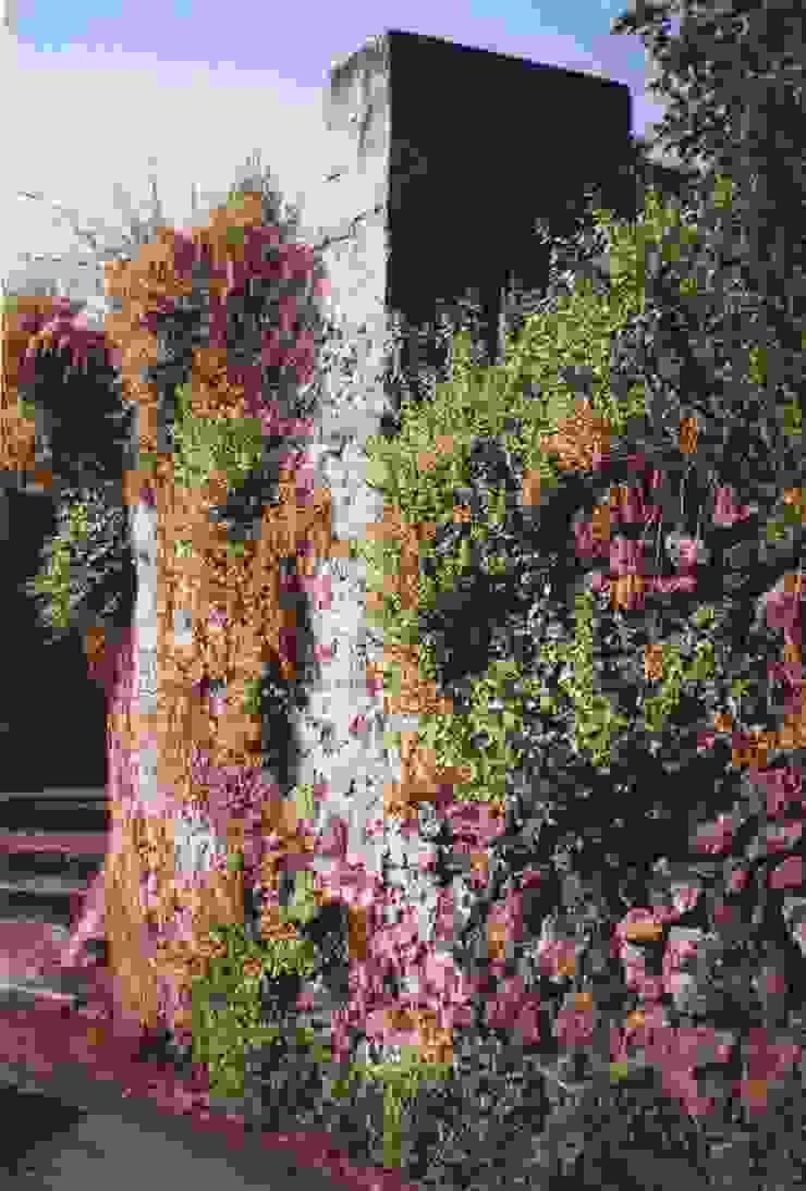 Terrapieno originale di Antonio Torrisi Mediterraneo