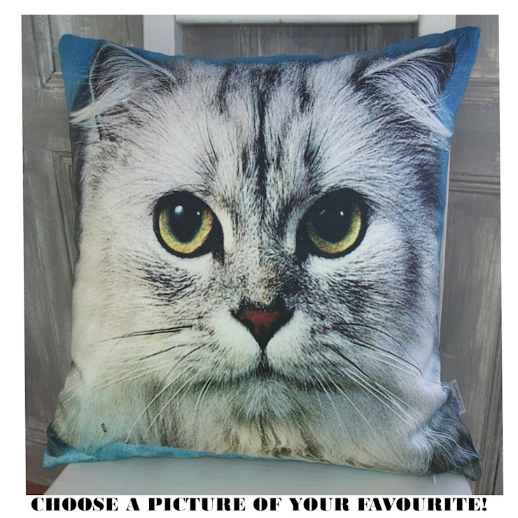 moggy cushion: eclectic  by Mpolytech Ltd, Eclectic