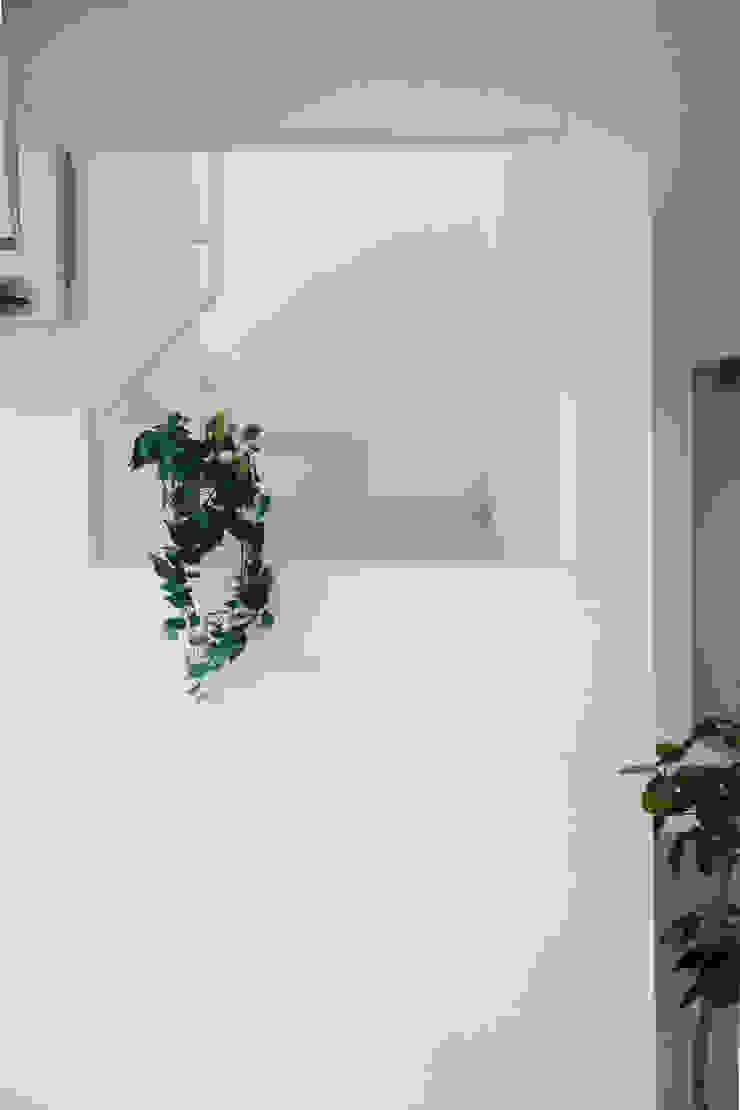 大分の家 モダンスタイルの 玄関&廊下&階段 の イノウエセッケイジムショ モダン