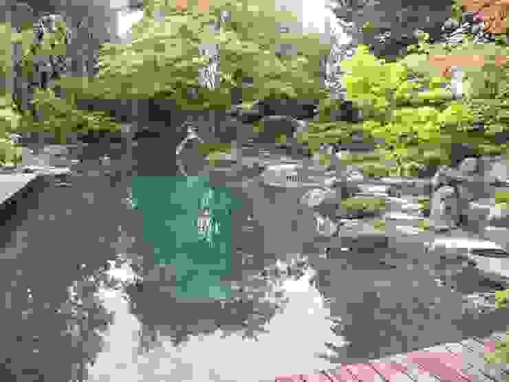 Сад в азиатском стиле от Kokeniwa Japanische Gartengestaltung Азиатский