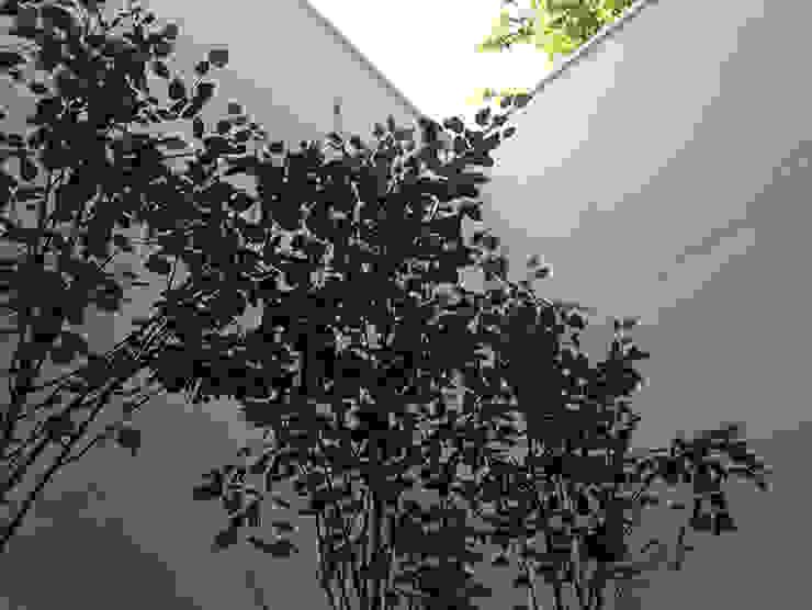 minimal city courtyard Claire Potter Design Minimalist style garden