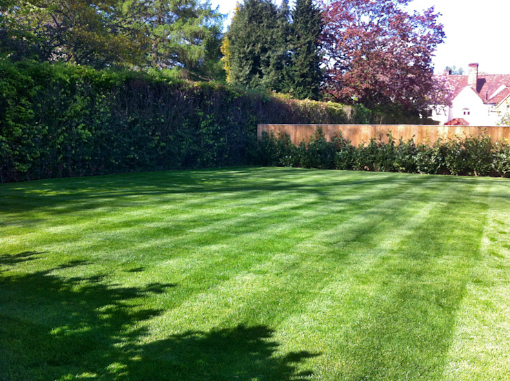 The lawn:  Garden by Zodiac Design ,