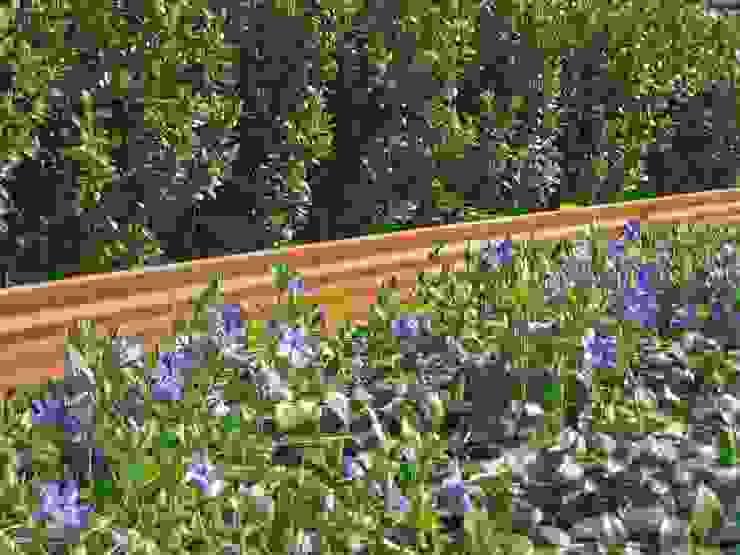 Gartenprofil 3000 - trendige Edelrost-Optik Mediterraner Garten von terra-S GmbH Mediterran