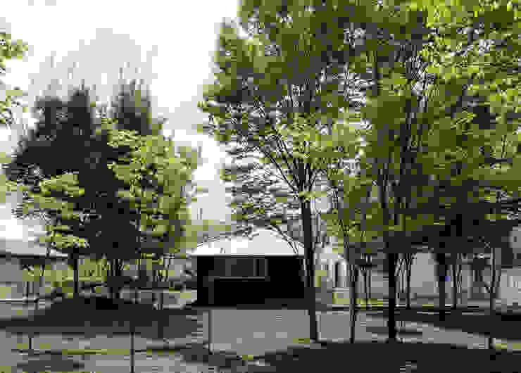 欅林に面する外観(初夏) モダンな 家 の m・style 一級建築士事務所 モダン 木 木目調