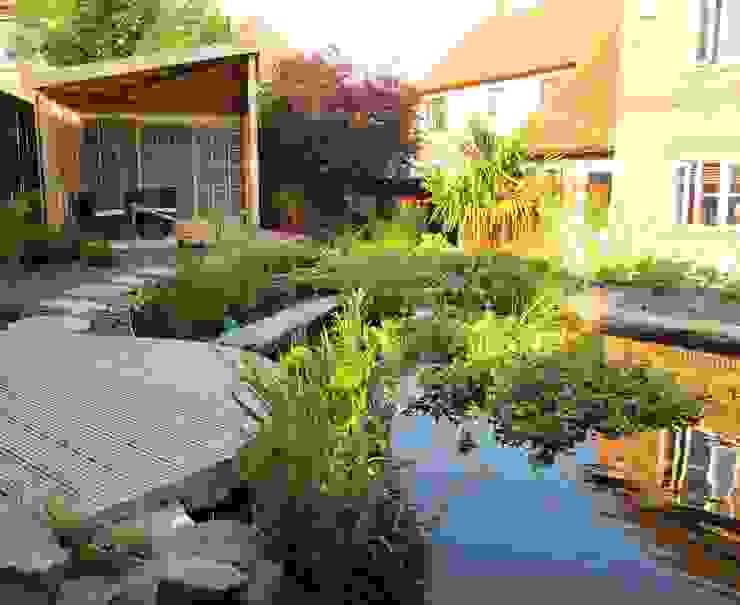Zen Inspired Garden, Bradley Stoke Vườn phong cách châu Á bởi Katherine Roper Landscape & Garden Design Châu Á