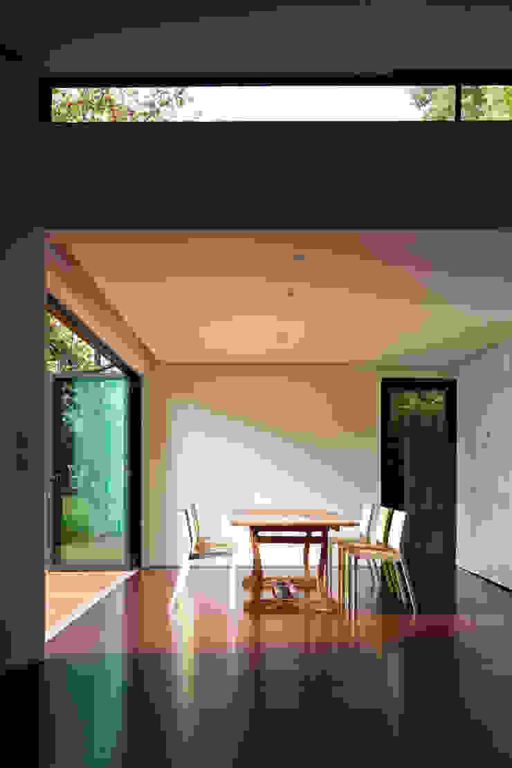 Summer House, Blackheath Modern living room by Fraser Brown MacKenna Architects Modern