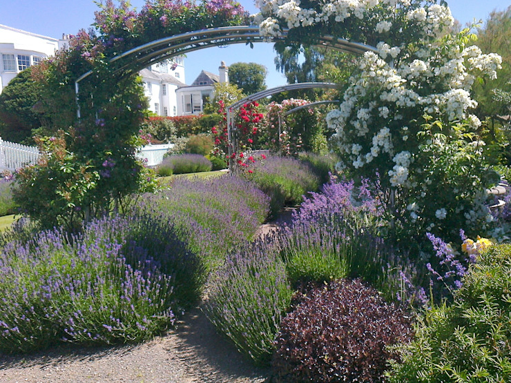 Lavender and roses Modern Garden by Roger Webster Garden Design Modern