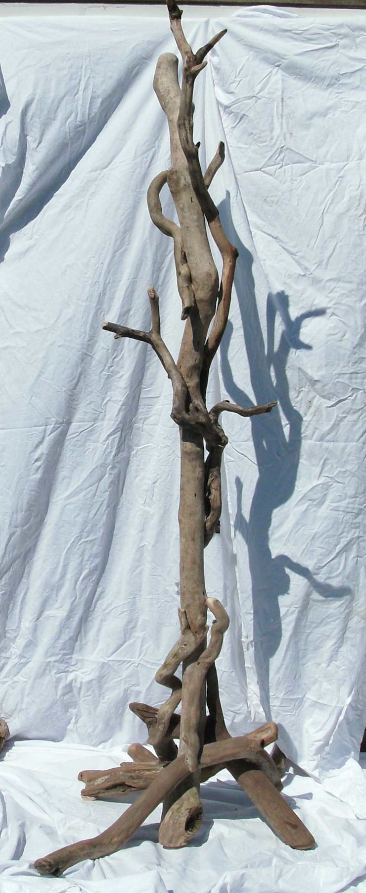 Driftwood Coat stand : rustic  by Julia's Driftwood, Rustic