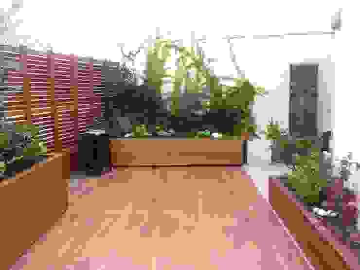 GREENERIA Tropischer Balkon, Veranda & Terrasse