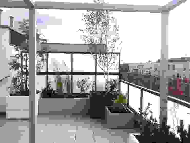 Balcones y terrazas de estilo minimalista de GREENERIA Minimalista
