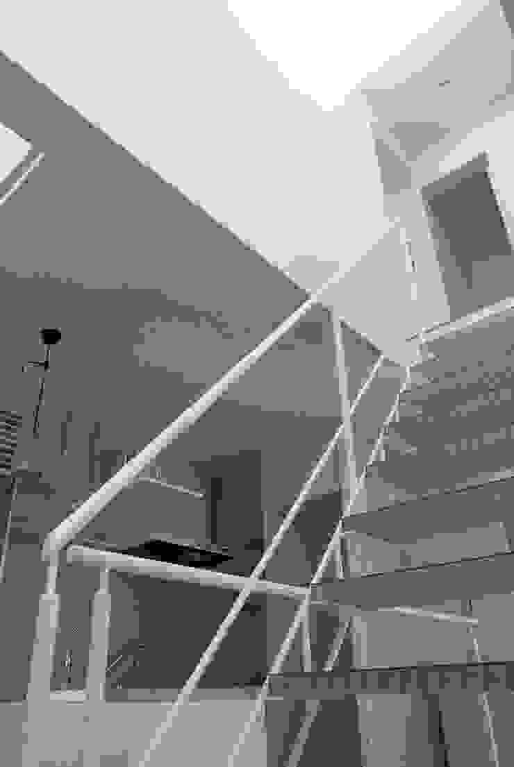 コトノハ舎 モダンスタイルの 玄関&廊下&階段 の SOCIUS一級建築士事務所 モダン 木 木目調