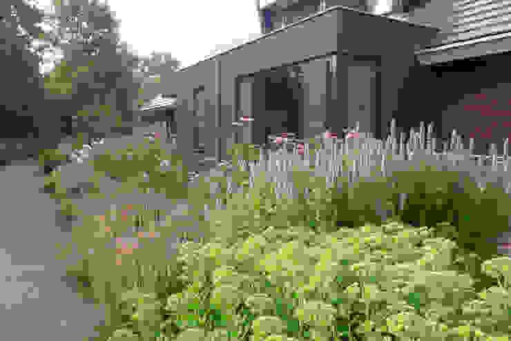 Nowoczesny ogród od Meeuwis de Vries Tuinen Nowoczesny
