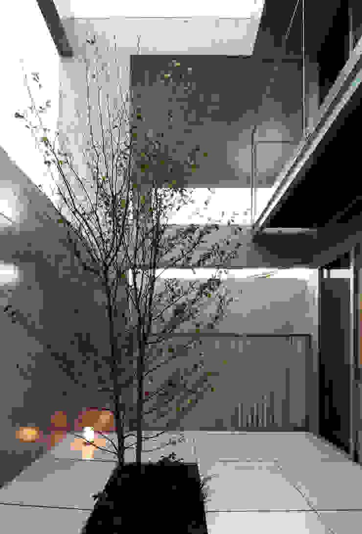 長谷雄聖建築設計事務所 Modern style gardens