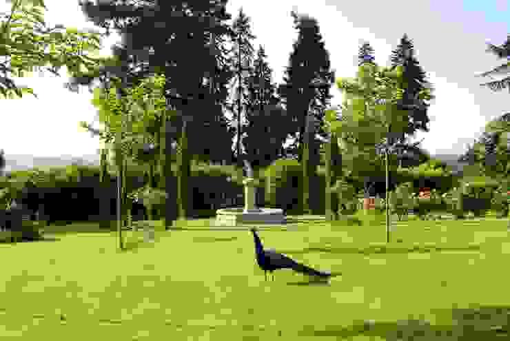 Jardines de estilo mediterráneo de Provence Retrouvée Mediterráneo