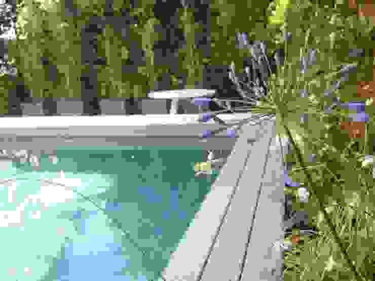 Diferentes proyectos de jardines y terrazas Piscinas de estilo moderno de IGLESIAS JARDINERÍA Y PAISAJE Moderno