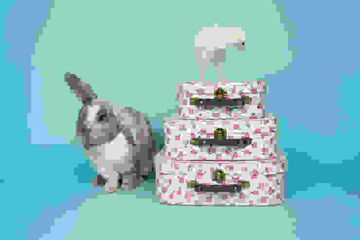 Petite Rose Storage Suitcases- set of 3 por Sass & Belle Clássico