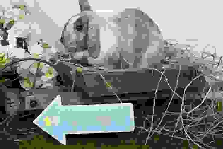Pastel Egg Hunt Sign: modern  by Sass & Belle, Modern