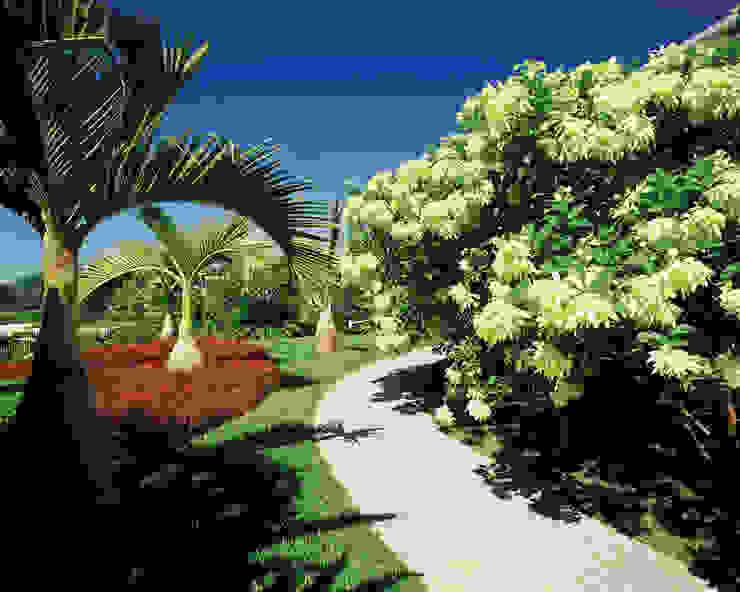 RESIDÊNCIA 01 Jardins tropicais por Marcelo Novaes Paisagismo Tropical