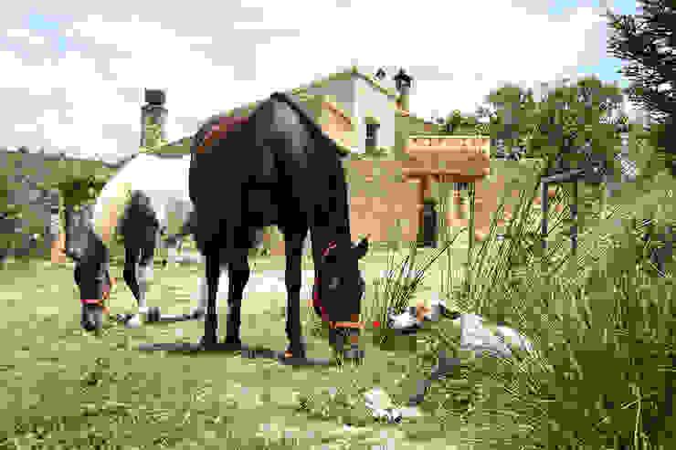 El valle de los caballos. Casas de estilo rural de Anticuable.com Rural