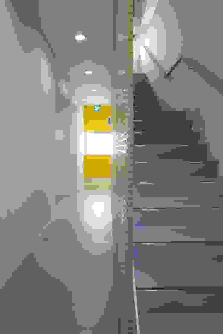 階段、廊下 の 白根博紀建築設計事務所 モダン