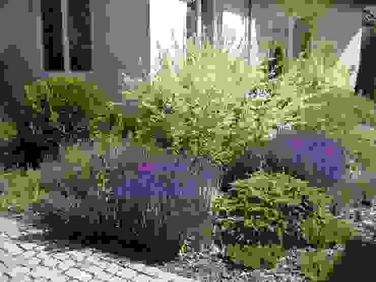 Duży ogród przydomowy od Sungarden - Projektowanie i urządzanie ogrodów