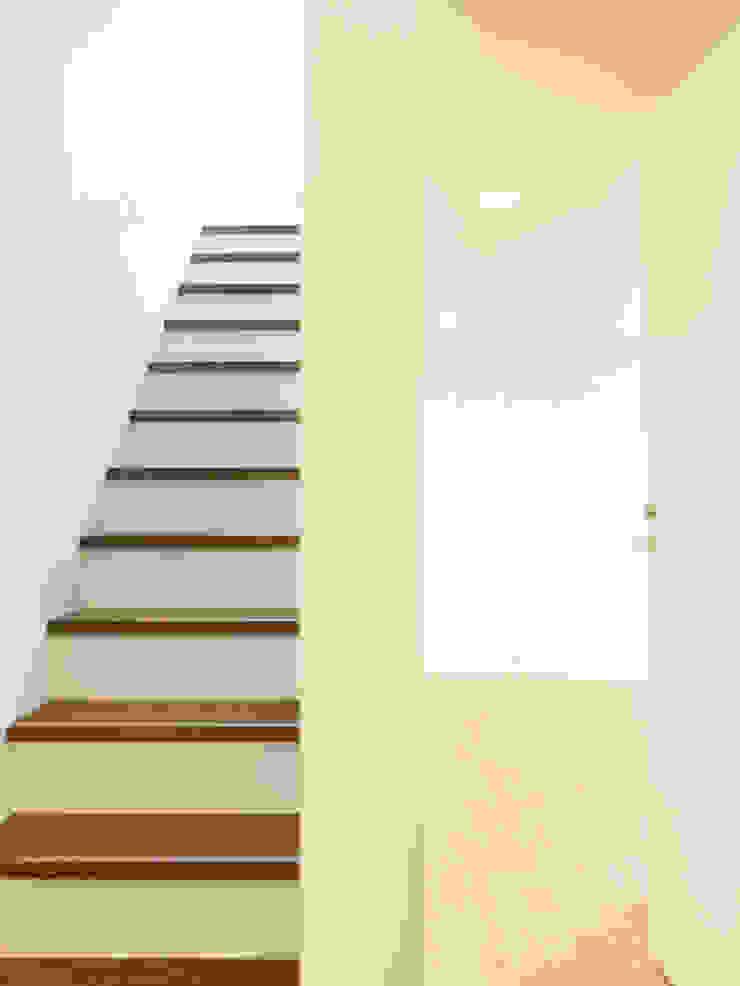 下馬のハウス モダンスタイルの 玄関&廊下&階段 の 齋藤和哉建築設計事務所 モダン