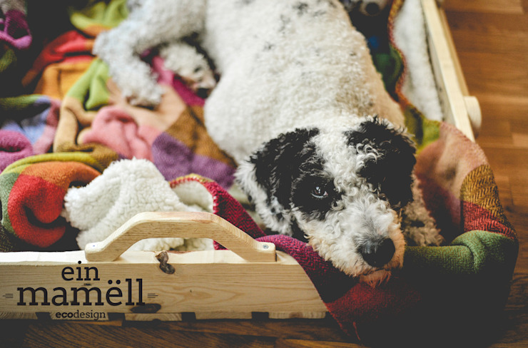 Ein Mamëll CasaAcessórios para animais