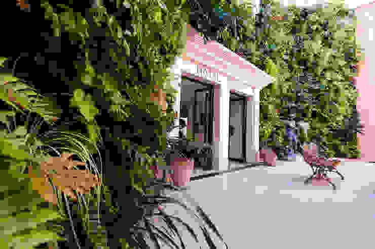 JUNGLE ART Tropical style garden