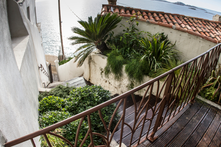 JUNGLE ART Mediterranean style garden