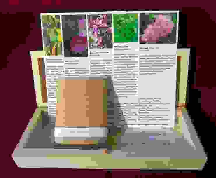 Wilde Duftpflanzen (Saatgut-Box) von Naturgarten-Samen aus Leipzig Landhaus
