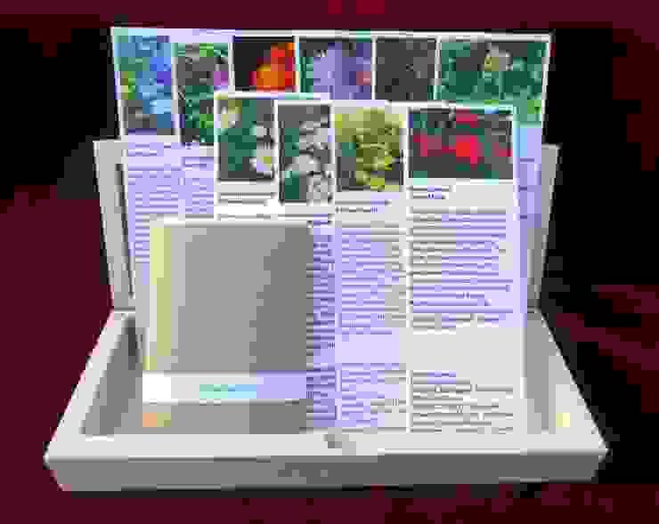 Wildblumenwiese (Saatgut-Box) von Naturgarten-Samen aus Leipzig Landhaus