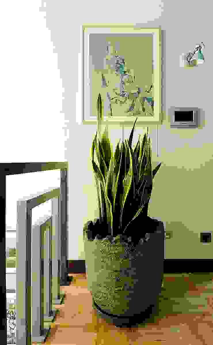 Новогорск 2 Коридор, прихожая и лестница в стиле минимализм от Roomsbyme Минимализм