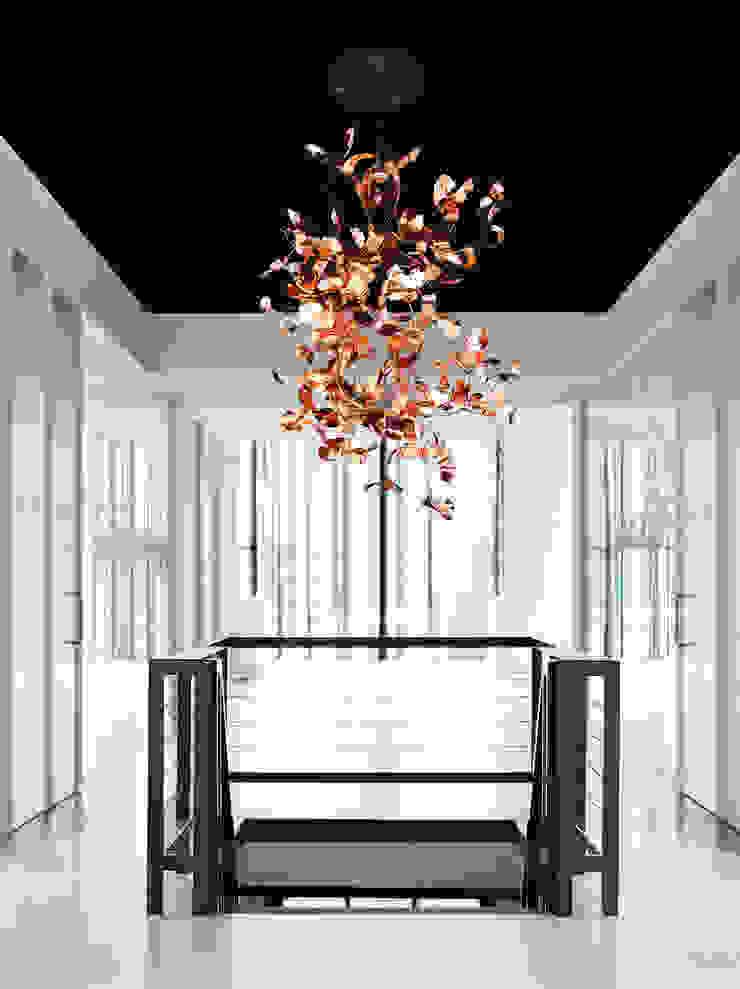 KELP, Brand Van Egmond: modern  by Future Light Design, Modern