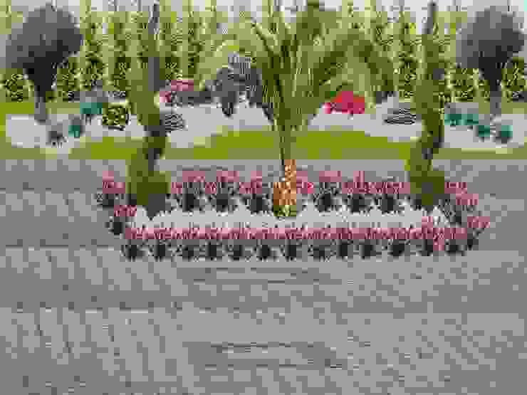Sapanca Çisem Peyzaj Tasarım Tropikal Bahçe