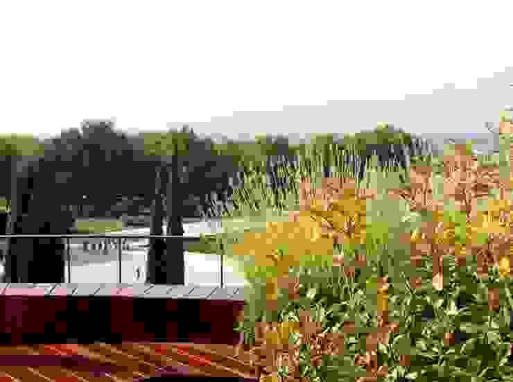 Terraza pequeña en Madrid - Diseño y reforma de terraza Balcones y terrazas de estilo moderno de La Habitación Verde Moderno