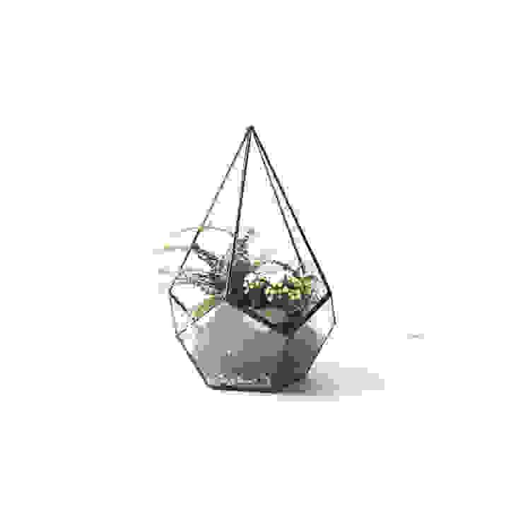 Teadrop terrarium Expat Design Shop CasaAccessori & Decorazioni