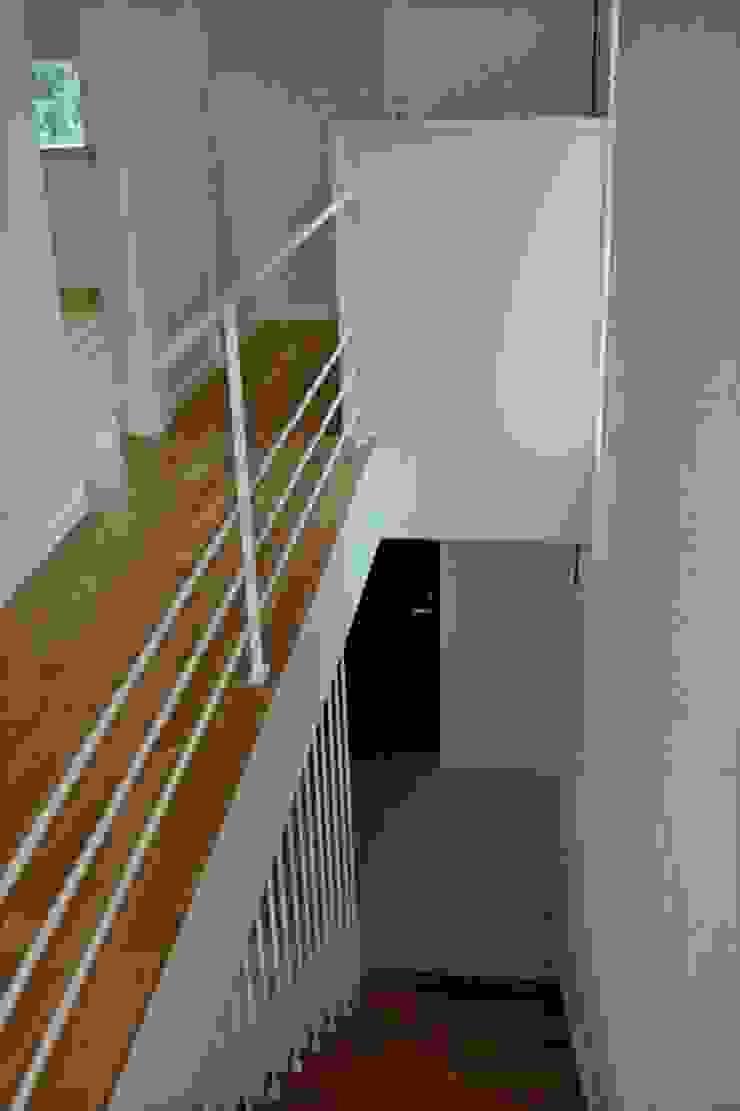 借景を取り込んだ家 モダンスタイルの 玄関&廊下&階段 の 三浦尚人建築設計工房 モダン