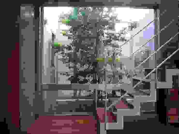 中庭と坪庭のあるガレージハウス モダンな庭 の 三浦尚人建築設計工房 モダン