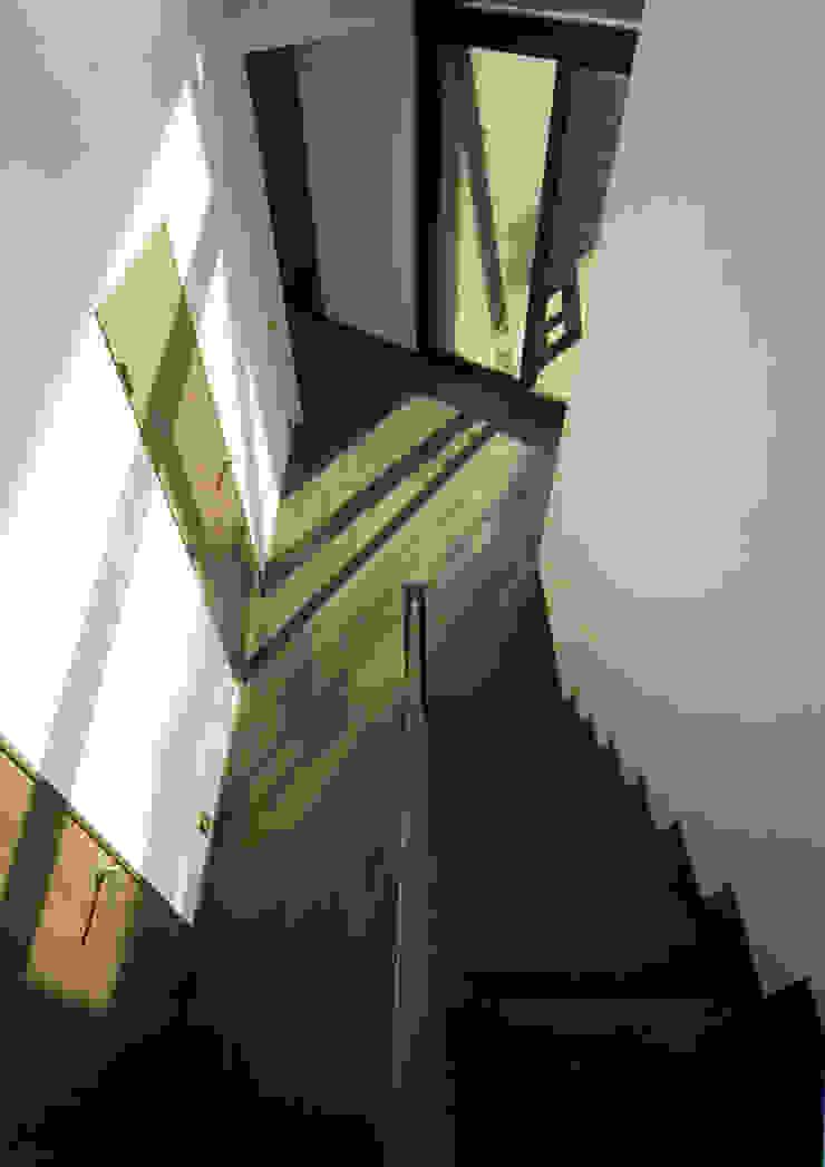 葉山の別荘 モダンスタイルの 玄関&廊下&階段 の 井上洋介建築研究所 モダン