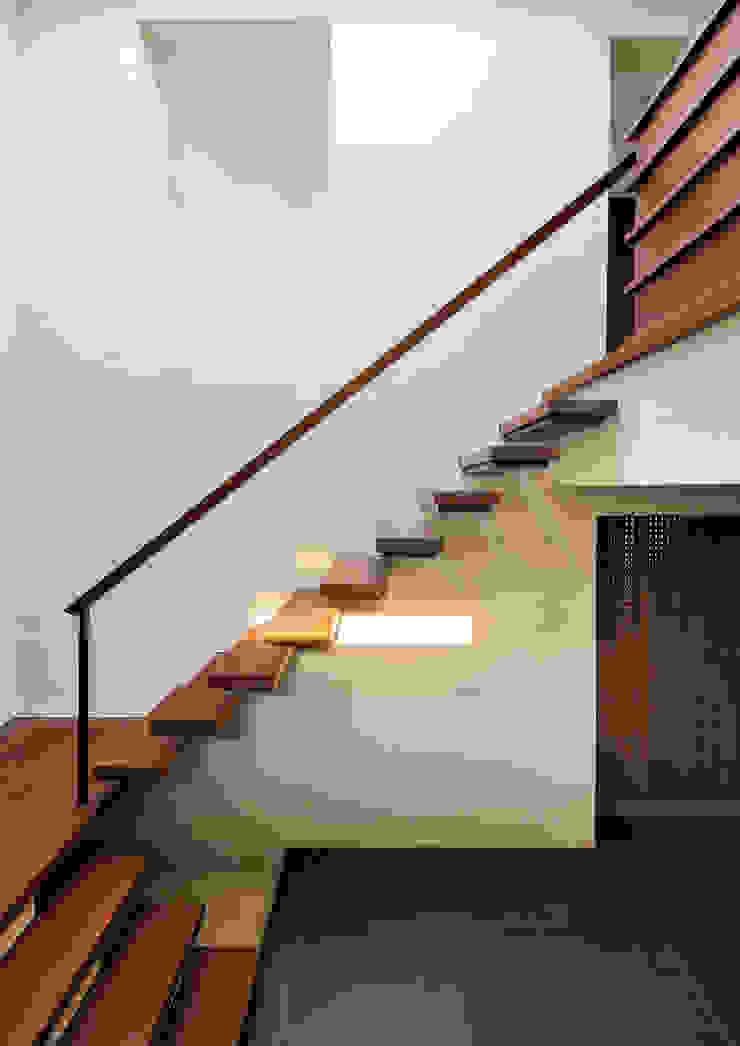 用賀の住宅 モダンスタイルの 玄関&廊下&階段 の 井上洋介建築研究所 モダン